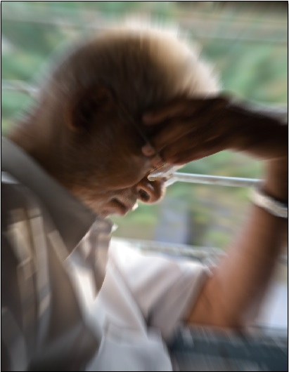 Elderly_man_3